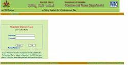 Professional Tax Annual Return Service
