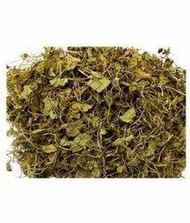 Brahmi TBC - Tea Bag Cut