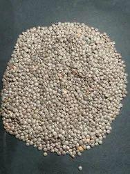 Black Sabut Masoor Dal, Pan India, High in Protein