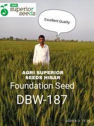 Agri Seed