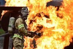 Offline Fire Risk Assessment Service