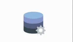 Integration and Data Management