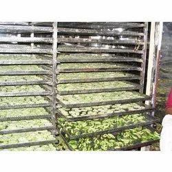 Vegetable Dryer