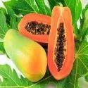Spray Dried 100% Natural Papaya Powder Extract