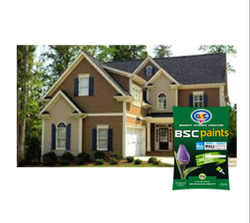 BSC Paints Level Plast Wall Putty 20 Kg