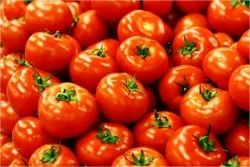Indian Red Fresh Tomato