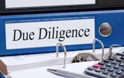 Due Diligence Consultant Service