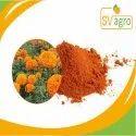 Lutein 10%, 20% Marigold Extract