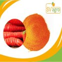 Natural Organic Spray Dried Carrot Juice Powder