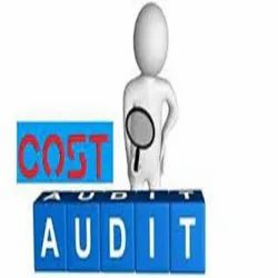 Consulting Firm Cost Auditing Service