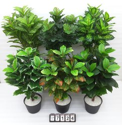 Plastic Decorative Plant