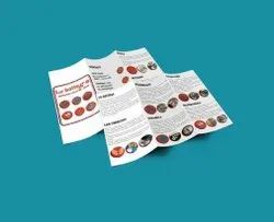 Laminated Paper Advertising Printed Brochure, Size: A4
