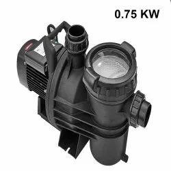 0.75 kW Swimming Pool Centrifugal Pump