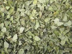 Gotu Kola TBC - Tea Bag Cut