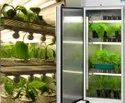 Plant Growth Chamber
