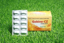 Gobine-CZ