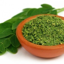 Moringa Leaves Tbc - Tea Bag Cut