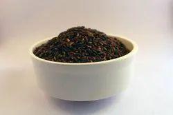 Black Rice / Purple Rice