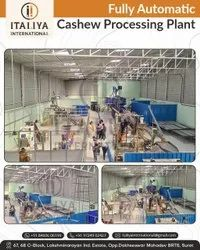 Fully Automatic Cashew Processing Plant