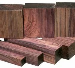 Green World Delbergia Latifolia / Indian Rosewood Timber Tree Seeds  For Farming