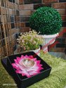 Flower Shape Akhand Diya