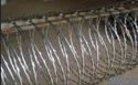 SS Concertina Wire