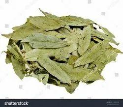 Senna Leaves Tbc - Tea Bag Cut