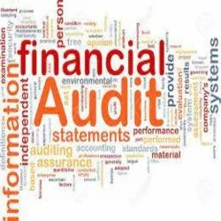 Manufacturing Consulting Firm Statutory Financial Auditing Service, Pan India