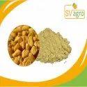 Common Fenugreek Extract Powder