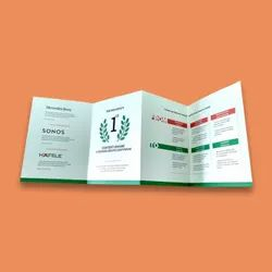 Flyers Printing Service, Location: India