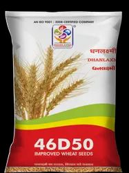 Dhanlaxmi Improved Wheat 46D50 Seeds, 3%, Packaging Size: 20kg