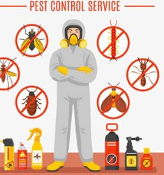 Residential Home Household Pest Control Service, in Delhi NCR