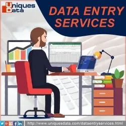 Legal Data Entry Work, Service Provider