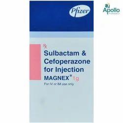Magnex 1gm (Sulbactam + Cefoperazone)