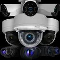 Pelco IP Network Cameras