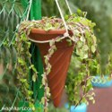 FRP Hanging Ice-cream Cone Planter