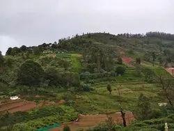 Ooty 100 Yards For Rs 3 Lakhs In Hillsgrove Near Palada The Nilgiris