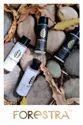 Herbal Floral Hotel Shampoo, Packaging Size: 20ml, Packaging Type: Bottle