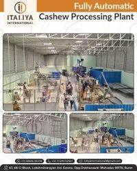 Cashew Processing