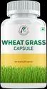 WHEAT GRASS CAPSULE