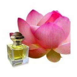Lotus Pink Absolute Oil