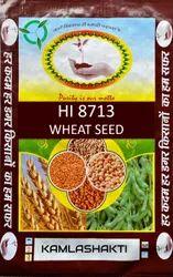 Natural Wheat Seed Hi 8713 (Pusa Mangal) Grown In M.P., Packaging Type: PP Bag, Packaging Size: 40 kg
