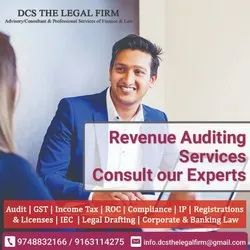 Consulting Firm Retainer Based Revenue Audit Services