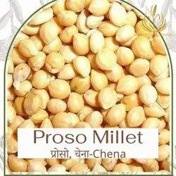 customisation possible Natural Proso Millet Pani Varagu, Gluten Free, Packaging Size: 25 kg Bags