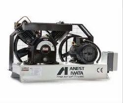 Anest Iwata Vacuum Pump