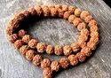 Rudraksha 54 beads Mala