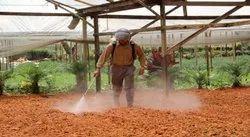 Spray Chemical based Soil Treatment Services, Chakan Maharashtra