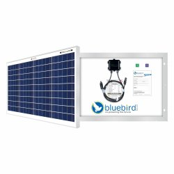 40w Polycrystalline Solar Power Panel - Bluebird Solar