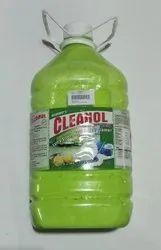 Cleanol Antiseptic Liquid Lime Flavour