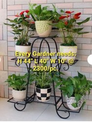 Planters & Pot Stand